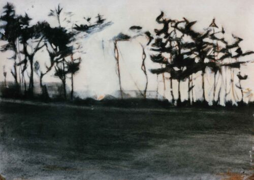 Bewliehill, Scotland. Charcoal And Acrylic Drawing By Victoria Orr Ewing