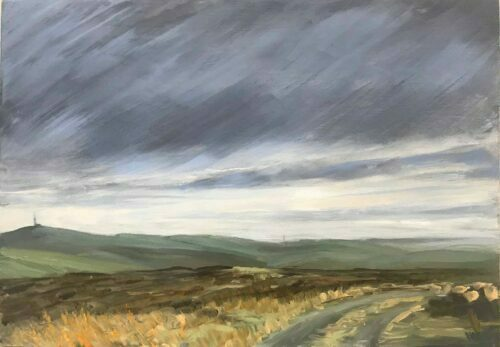 Looking For Ireland From Auchenree, Galloway. Plein Air Landscape Painting By Victoria Orr Ewing