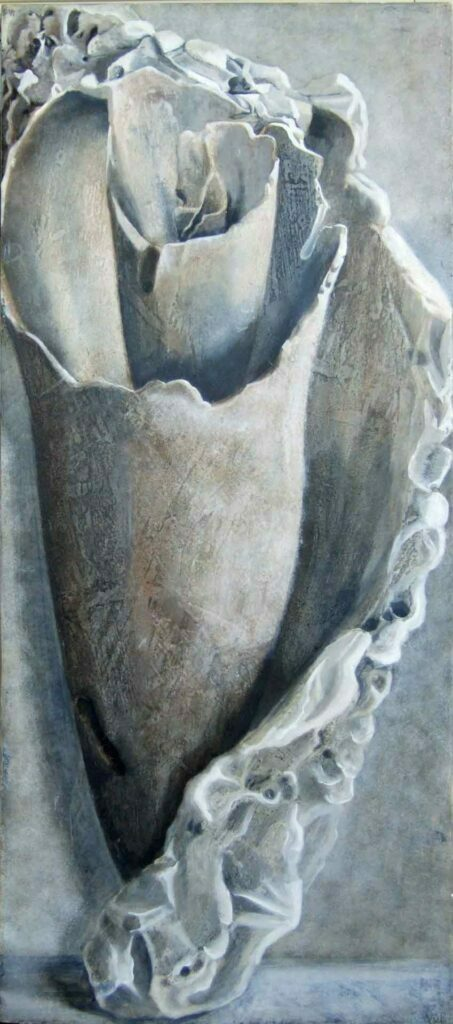 Conch Shell. Still Life Painting by Victoria Orr Ewing