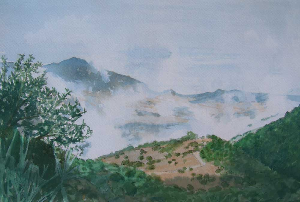 Sketch Of Summer Clouds From The Finca