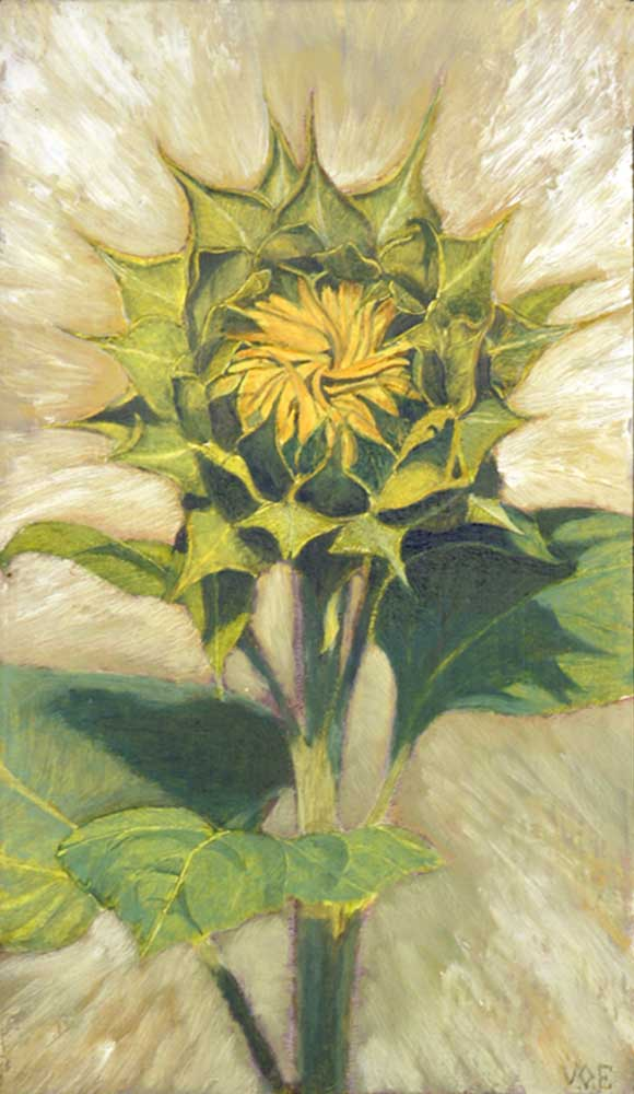Young Sunflower. Still Life Painting by Victoria Orr Ewing