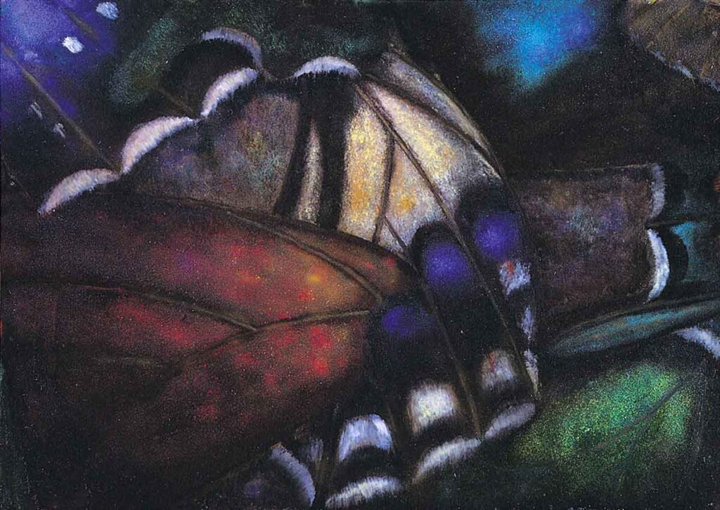 Wings 1. Still Life Painting by Victoria Orr Ewing